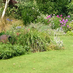 Re designing your garden 39 s planting areas for Redesign your garden